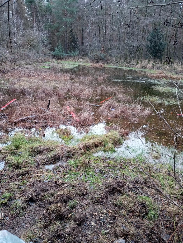 Wald_R1