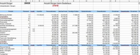Template zu Haushalt 2013