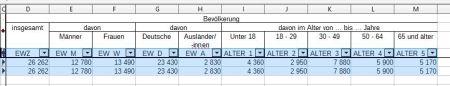 Zensus. Daten für Rödermark