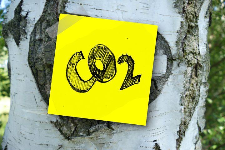 CO2 Entnahme