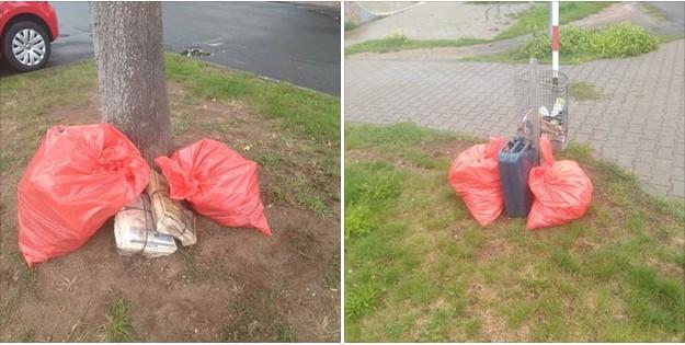 Umweltfreunde Rödermark sammeln Müll.