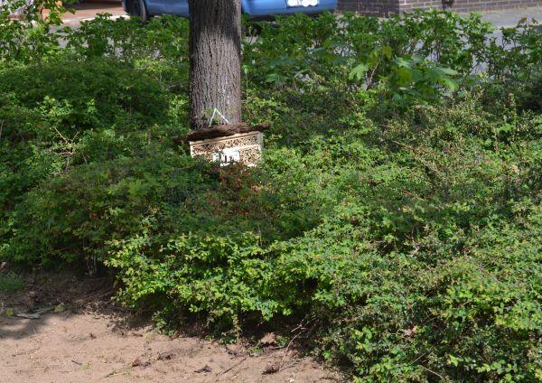 Insektenhotelhotel an der neuen Wildnblumenwiese.