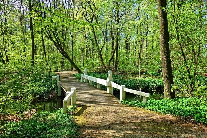 Holzbrücke. Symbolfoto.
