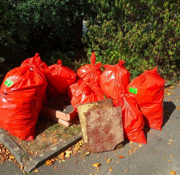 Umweltfreundesammeln am World Cleanup Day